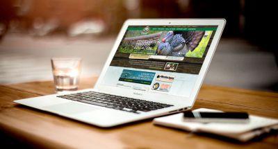 چطور یک سایت میتواند به کسب و کار شما کمک کند؟