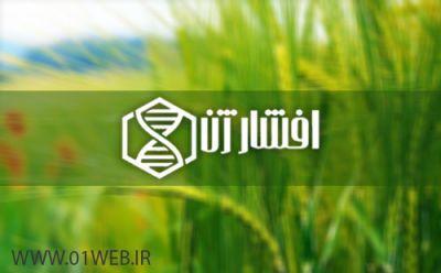 طراحی سایت مجتمع دامپروری افشار ژن