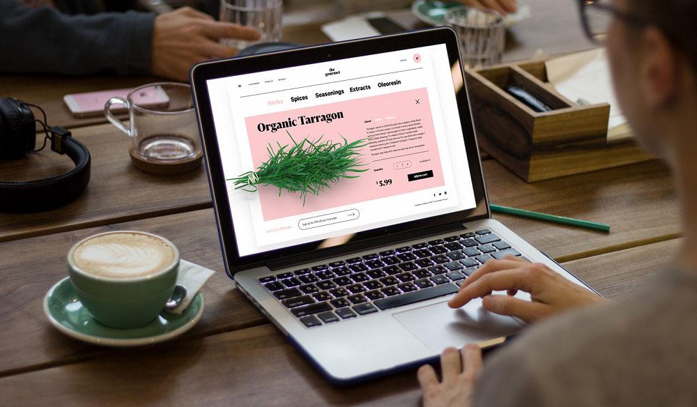 طراحی سایت اختصاصی یا استفاده از قالب آماده؟